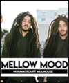 Réservation MELLOW MOOD