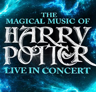 Filmmuziek THE MAGICAL MUSIC OF HARRY POTTER NICE