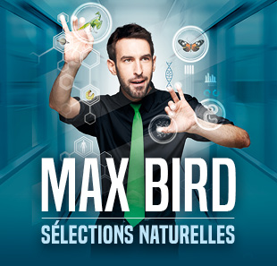 One man/woman show MAX BIRD SELECTIONS NATURELLES NANCY
